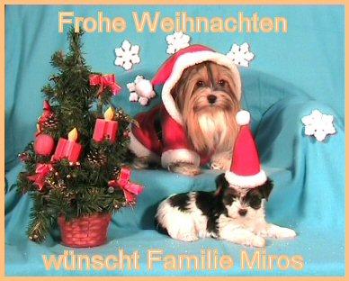 An den Beitrag angehängtes Bild: http://www.hundezucht-miros.de/Weihn2008Gb.jpg