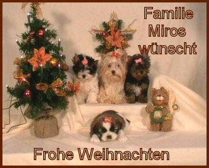 An den Beitrag angehängtes Bild: http://www.hundezucht-miros.de/Weihnachten2009GB.jpg